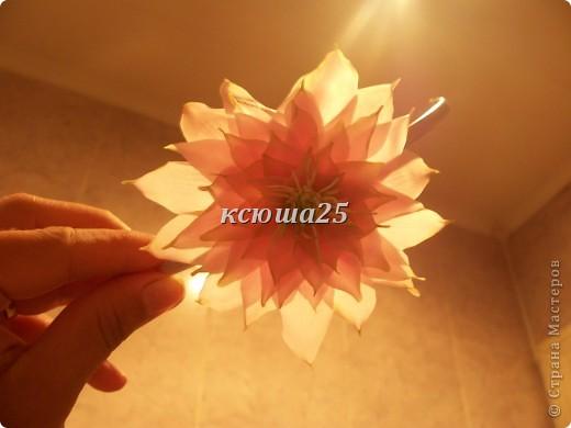 Добавила фото при дневном освещении,они гораздо лучше))))))) фото 6