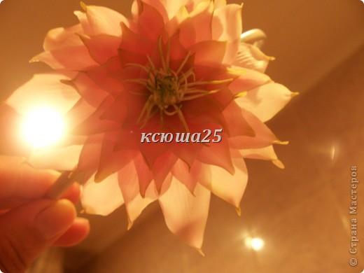 Добавила фото при дневном освещении,они гораздо лучше))))))) фото 7
