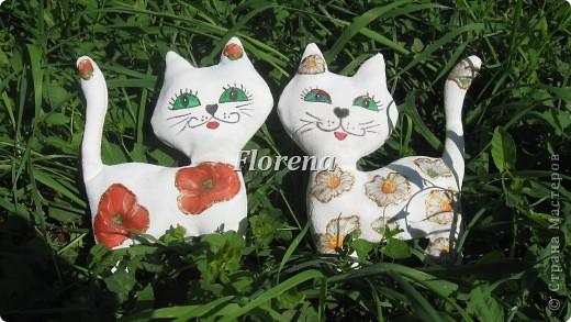 Цветочные kisы. Увидела я кошечек у Ksu79 и решила,что тоже хочу  сшитьэтих милашек .Мордашки тоже срисовывала у неё,они такие милые. Решила украсить их цветами-это моя любимая тема:))  фото 4