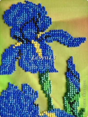 Моя первая частичная вышивка бисером. Фон очень интересный, с эффектом масляной живописи.  фото 3