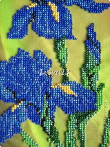 Моя первая частичная вышивка бисером. Фон очень интересный, с эффектом масляной живописи.  фото 4