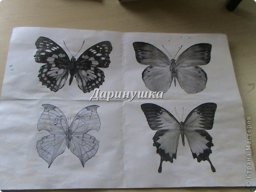 Мои бабочки + МК фото 5