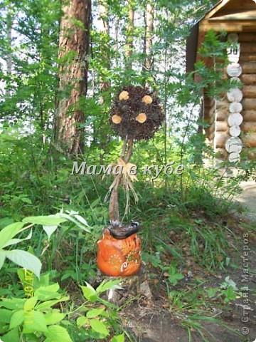 Дерево из шишек и салфеток фото 1