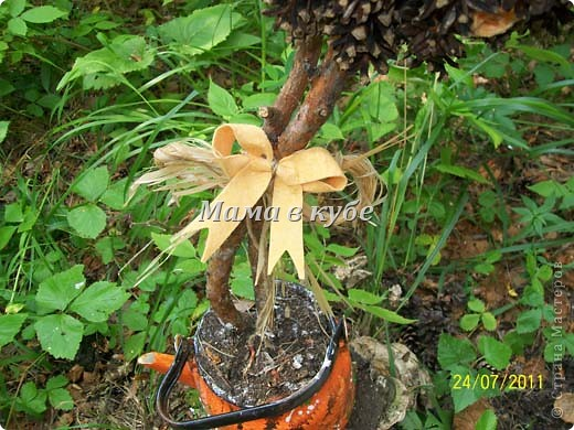 Дерево из шишек и салфеток фото 3