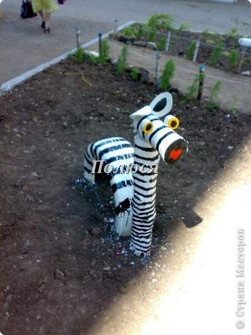 Жираф!! фото 2