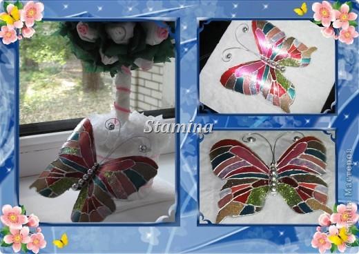 Бабочка (2)