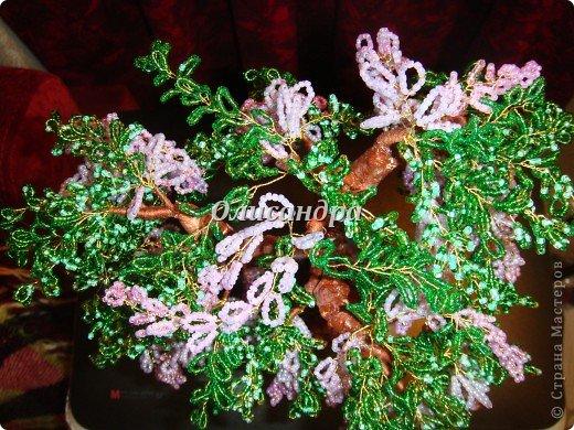 """Мне очень нравятся глицинии...  Глици́ния (от греч. γλυκός — сладкий), или висте́рия (лат. Wistéria) — род высоких древовидных вьющихся субтропических растений из семейства Бобовые с крупными кистями душистых лиловых цветков. Широко используется в ландшафтном дизайне.   Давно мечтала сделать такое дерево из бисера, но не могла решиться... Теперь понимаю, что это было не с проста... Глициния- безумно трудоемкое и """"долгоиграющее"""" дерево... ,и если бы я делала его для себя, то процесс создания занял бы не один месяц... по чуть-чуть... не спеша... Но я делала его в подарок , поэтому времени было очень мало... Каждый день вспоминала Золушку и рабыню Изауру..., жалела себя и в голове крутилось только одно слово... """"кошмар""""...Как я могла в это вписаться?  И все-таки, я его сделала... и назвала """"Кошмариком""""...  Если еще не очень вас напугала и вы хотите повторить мой """"подвиг""""... , рассказываю, как это было... фото 63"""