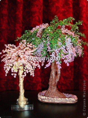 """А это для сравнения.  Моя первое дерево из бисера...  """"сакуровая пальма """" или  """"пальмовая сакура """"... http..."""