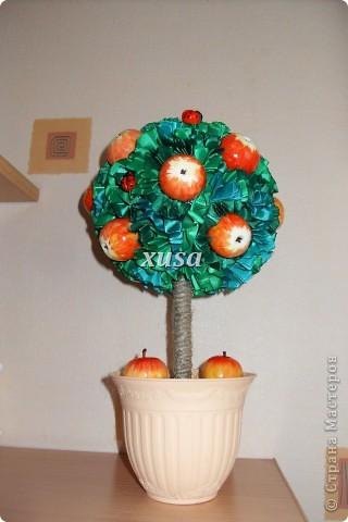 Так понравилось дерево из лент моим гостям, что пришлось еще одно делать, это решила сделать традиционно уже для меня с яблоками, но как мне кажется тоже очень не плохо! фото 1