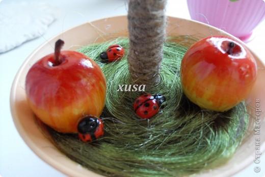 Так понравилось дерево из лент моим гостям, что пришлось еще одно делать, это решила сделать традиционно уже для меня с яблоками, но как мне кажется тоже очень не плохо! фото 2