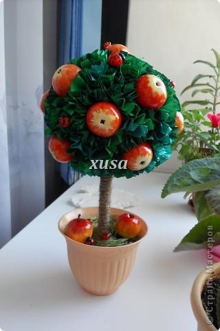 Так понравилось дерево из лент моим гостям, что пришлось еще одно делать, это решила сделать традиционно уже для меня с яблоками, но как мне кажется тоже очень не плохо! фото 6