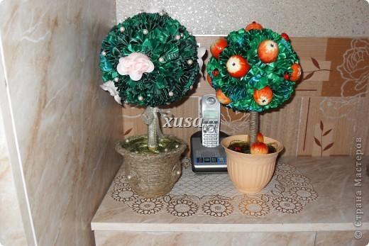 Так понравилось дерево из лент моим гостям, что пришлось еще одно делать, это решила сделать традиционно уже для меня с яблоками, но как мне кажется тоже очень не плохо! фото 7