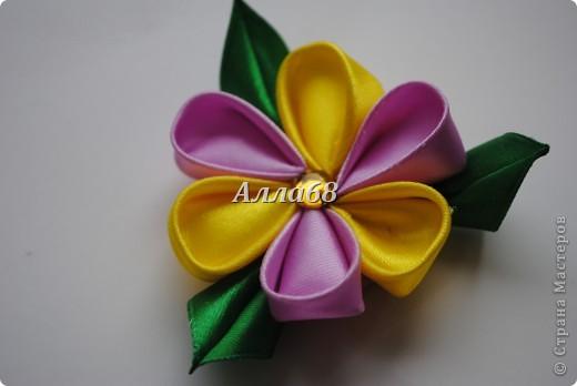 Цветочки фото 8