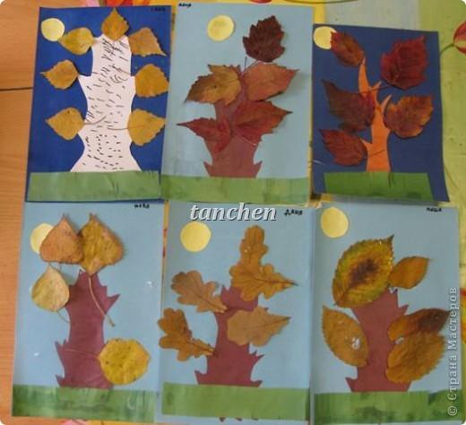 осенние деревья,выполненные на бархатной бумаге детьми  4-5 лет фото 1
