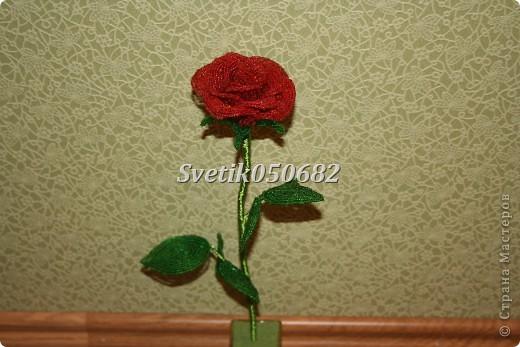 Цветы из бисера (роза) фото 2