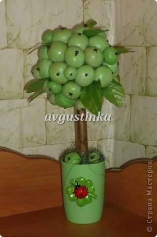 Доброе утро  мастерицам этого сайта. Выставляю своё яблочное деревце. Спасибо всем кто заглянул.