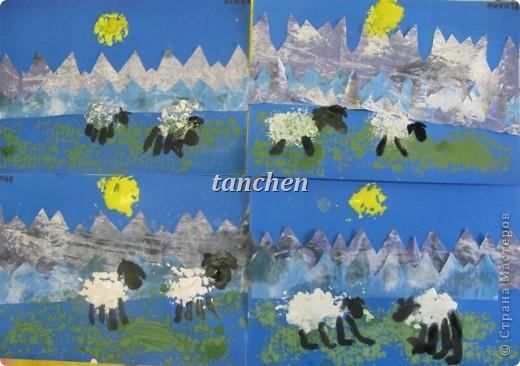 овечки в горах фото 2
