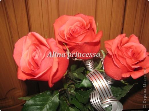 Хочу продемонстрировать вам  цветы в Петербурге и не только!!! я сама не очень люблю срывать цветы-потом хоть и красиво, но и тяжело выбрасывать завянувшие высохшие цветы!!! Ну, в общем смотрите!  фото 21