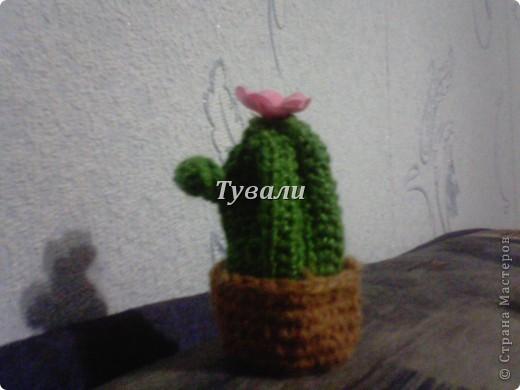Подарок фанатке Смешариков на юбилей. фото 21