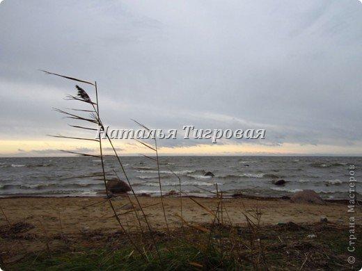 Сегодня по рабочим обстоятельствам меня занесло на берег Финского залива. Фотик был с собой.  Вот ,как говорится,почувствуйте разницу))). Вчерашний солнечный день и сегодняшний-ветренный и пасмурный. Но как бы-то ни было ,все равно очень красиво,хоть и ...сурово))) фото 1