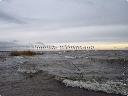 Сегодня по рабочим обстоятельствам меня занесло на берег Финского залива. Фотик был с собой.  Вот ,как говорится,почувствуйте разницу))). Вчерашний солнечный день и сегодняшний-ветренный и пасмурный. Но как бы-то ни было ,все равно очень красиво,хоть и ...сурово))) фото 7