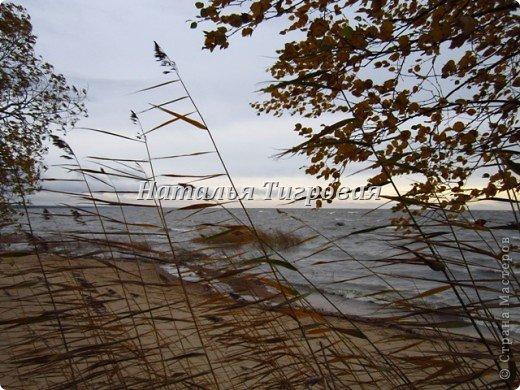 Сегодня по рабочим обстоятельствам меня занесло на берег Финского залива. Фотик был с собой.  Вот ,как говорится,почувствуйте разницу))). Вчерашний солнечный день и сегодняшний-ветренный и пасмурный. Но как бы-то ни было ,все равно очень красиво,хоть и ...сурово))) фото 9
