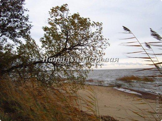 Сегодня по рабочим обстоятельствам меня занесло на берег Финского залива. Фотик был с собой.  Вот ,как говорится,почувствуйте разницу))). Вчерашний солнечный день и сегодняшний-ветренный и пасмурный. Но как бы-то ни было ,все равно очень красиво,хоть и ...сурово))) фото 12