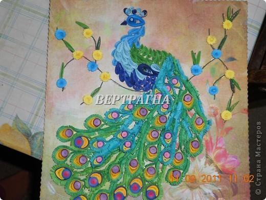 Моя Жар-птица.Спасибо за мастер-класс Ольге Ольшак. Панно выполнено как большая открытка. На обратной стороне-поздравление с днем рождения для очень дорогого мне человека.