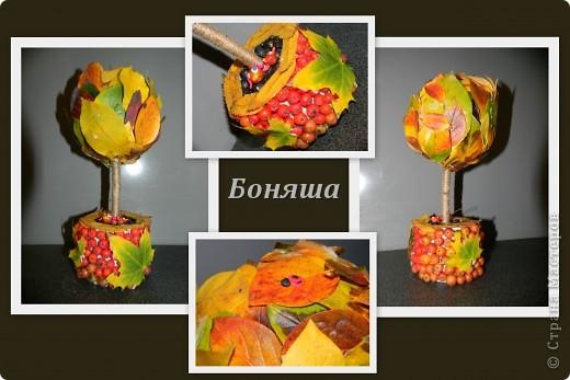 Осеннее деревцо