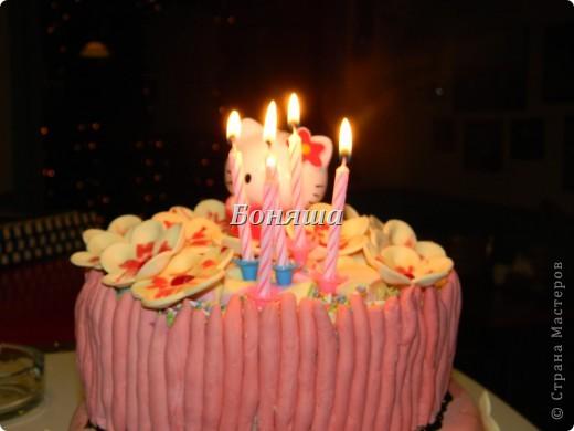 Торт на 5 лет фото 2