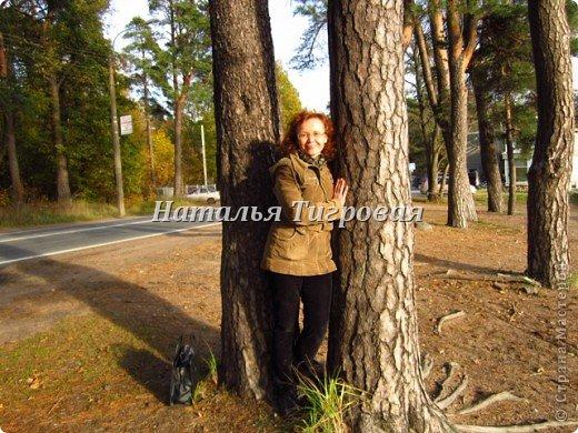 Здравствуйте ,дорогие  жители Страны Мастеров! В прошлый раз  я ненароком заморозила вас своим репортажем  с Финского залива. В качестве реабилитации приглашаю полюбоваться осенним  Финским заливом  в  ясную погоду !Чудо как хорош!!! фото 6