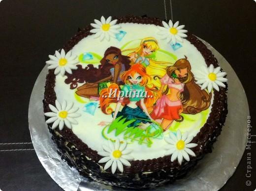Фото торт с мастикой своими руками для