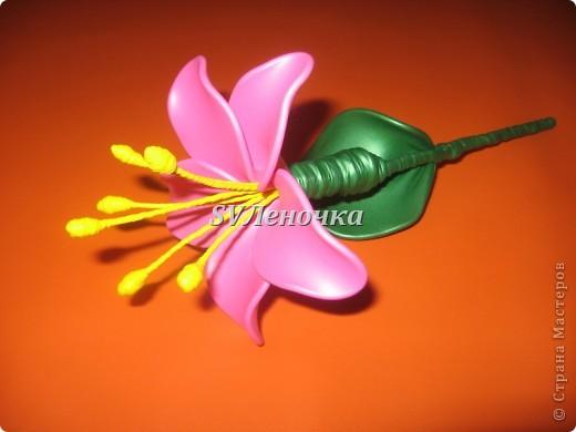 Загадочный цветок фото 1