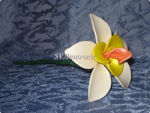 Загадочный цветок фото 5