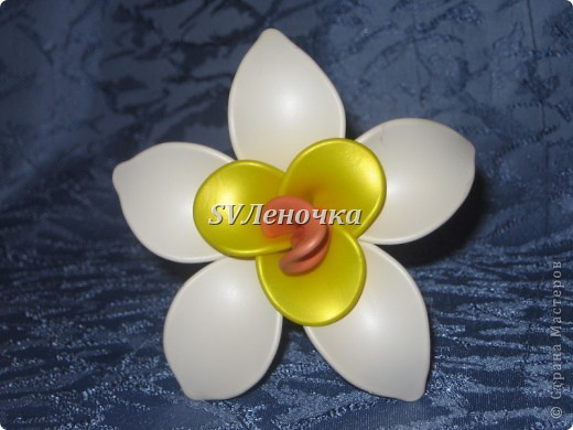 Загадочный цветок фото 6