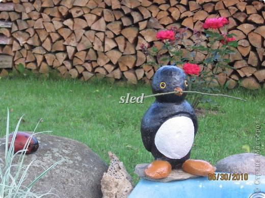 Этот пингвинчик сделан из камней, соединенных небольшим количеством цемента и покрашен  фото 1