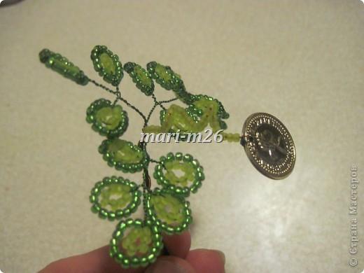 """Представляю вашему вниманию один из вариантов денежного дерева. История его создания такова - срочно нужен был оригинальный подарок для мужчины. Вот за три дня и """"родилось"""" такое дерево. Как - об этом сейчас подробно расскажу... фото 20"""