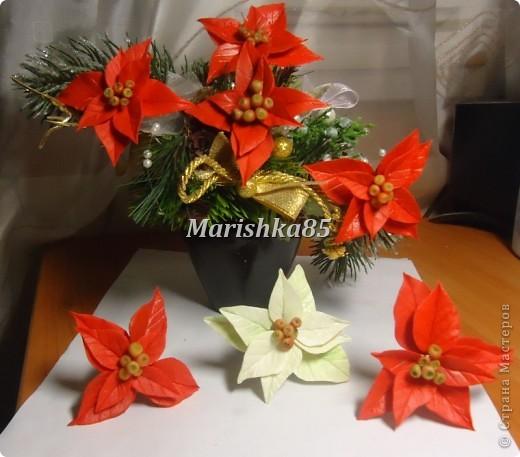 В преддверии новогодних праздников можно увидеть много новогодних украшений, одним из праздничных цветков по праву стала пуансетия. Видя эти замечательные цветы, всегда вспоминаются красивейшие венки с ними. Предлагаю и вам слепить такие красивые рождественские цветы. фото 8