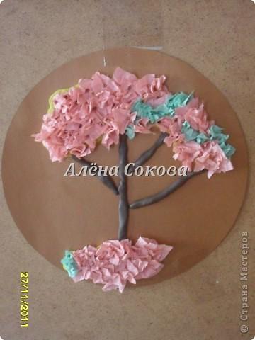 Какие разные деревья фото 4