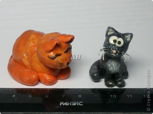 кот и кошка=) фото 2