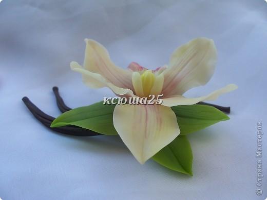 Всем привееееееет,я к вам с брошечкой)) попросили сделать ванильку.но это не цветок Ванили,скорее это Цимбидиум(я так предпологаю) но меня попросили сделать то,что изабражено у них на визитке))) фото 3