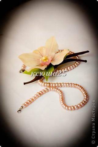 Всем привееееееет,я к вам с брошечкой)) попросили сделать ванильку.но это не цветок Ванили,скорее это Цимбидиум(я так предпологаю) но меня попросили сделать то,что изабражено у них на визитке))) фото 1