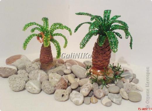 Бисероплетение пальма на картинке - Master class