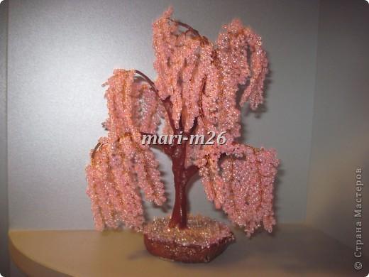 Дерево сакуры из бисера мастер класс