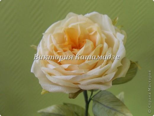 "Бутоньерка ""Ромашки"" фото 17"