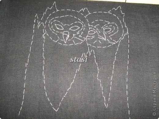 Совушки в гнезде фото 3