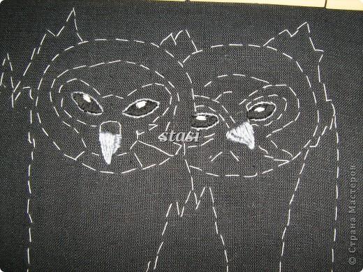 Совушки в гнезде фото 4