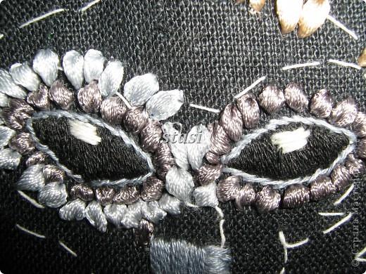 Совушки в гнезде фото 5