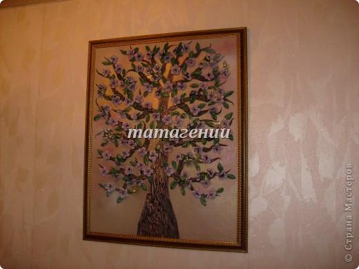 дерево в цвету фото 1