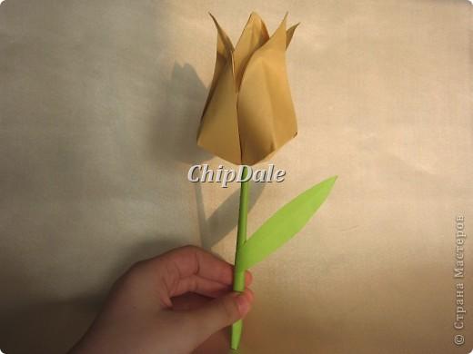 Здравствуйте, дорогие мастера и мастерицы! Первый раз в жизни делала оригами. Получились 6 тюльпанчиков - 5 в подарок к 8 марту соседям, а 6 - мне, на память. :) фото 3